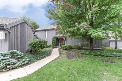 287 Deer Trail Court UNIT C, Lake Barrington, IL 60010 - MLS#: 10100567