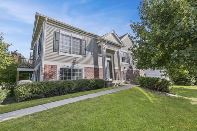 1367 Manning Avenue, Montgomery, IL 60538 - #: 10100620