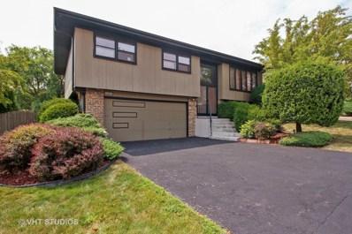 10328 S Aspen Drive, Palos Hills, IL 60465 - MLS#: 10100725