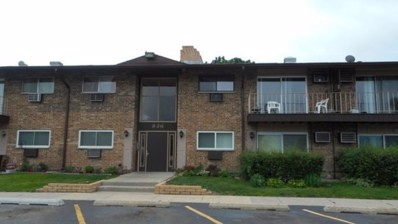 826 E Old Willow Road UNIT 101, Prospect Heights, IL 60070 - #: 10101048