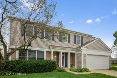 2143 Tiffany Drive, Schaumburg, IL 60194 - MLS#: 10101056