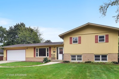 6541 Lyman Avenue, Downers Grove, IL 60516 - MLS#: 10101121
