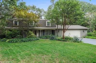 1749 Indian Trail Drive, Naperville, IL 60565 - MLS#: 10101402