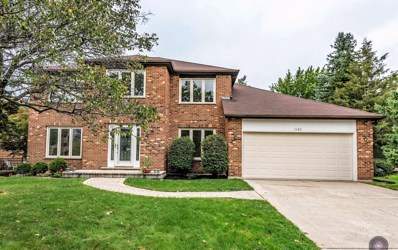 1165 Johnson Drive, Naperville, IL 60540 - MLS#: 10102103