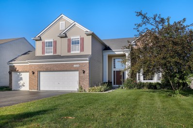 11626 Chesapeake Drive, Plainfield, IL 60585 - #: 10102556