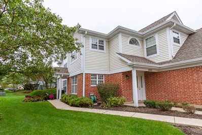 208 Westminster Court UNIT A, Schaumburg, IL 60193 - #: 10102685