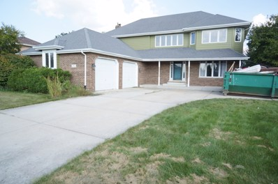 19513 Edgebrook Lane, Tinley Park, IL 60487 - MLS#: 10102935