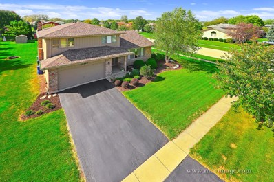 14440 S Saddle Brook Lane, Homer Glen, IL 60491 - #: 10103056