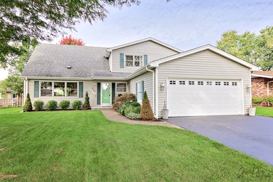517 Brown Street, Wauconda, IL 60084 - #: 10103221