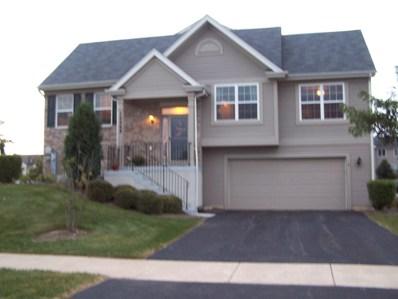 24545 George Washington Drive, Plainfield, IL 60544 - MLS#: 10103244