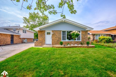 20060 Terrace Avenue, Lynwood, IL 60411 - #: 10103257