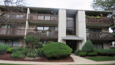 5027 Briartree Lane UNIT 215, Burbank, IL 60459 - MLS#: 10103603