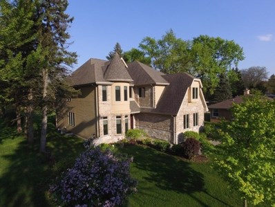 5919 Dunham Road, Downers Grove, IL 60516 - #: 10103751