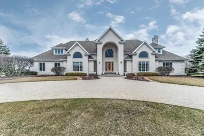 9304 W Golfview Drive, Frankfort, IL 60423 - #: 10104102