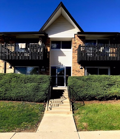 12B  Kingery Quarter UNIT 106, Willowbrook, IL 60527 - #: 10104143
