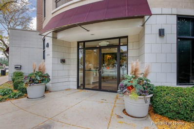 586 Crescent Boulevard UNIT 307, Glen Ellyn, IL 60137 - #: 10104168
