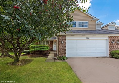 824 Winchester Lane, Northbrook, IL 60062 - #: 10104297