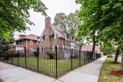 7357 S Merrill Avenue, Chicago, IL 60649 - MLS#: 10104528
