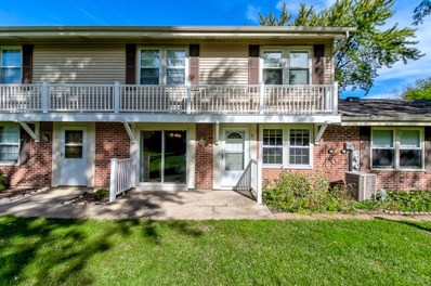 328 Carthage Court UNIT B, Bloomingdale, IL 60108 - MLS#: 10104675