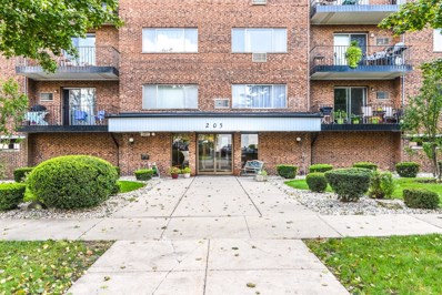 205 W Miner Street UNIT 301, Arlington Heights, IL 60005 - #: 10105021