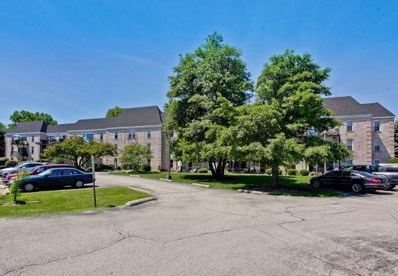 5001 Carriageway Drive UNIT 113, Rolling Meadows, IL 60008 - MLS#: 10105162