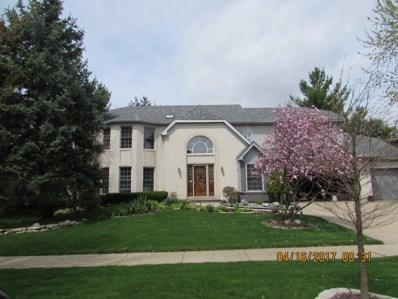411 Knoch Knolls Road, Naperville, IL 60565 - #: 10105170