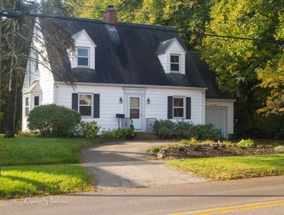 120 E South Street, Woodstock, IL 60098 - #: 10105424