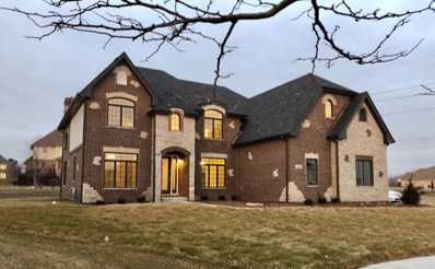 8884 Port Washington Drive, Frankfort, IL 60423 - MLS#: 10105441