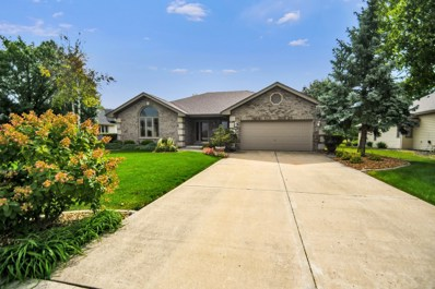 9911 195th Street, Mokena, IL 60448 - #: 10105546