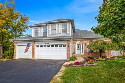 5019 Saint Andrews Drive, Plainfield, IL 60586 - MLS#: 10105703