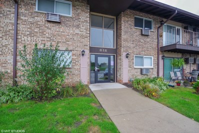 818 E Old Willow Road UNIT 5-208, Prospect Heights, IL 60070 - #: 10106199