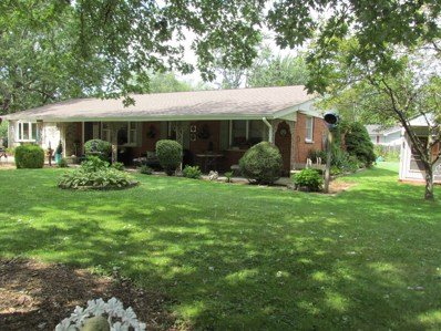 959 Shirley Parkway, New Lenox, IL 60451 - MLS#: 10106268