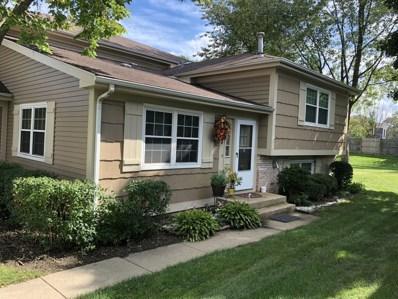 347 Birchwood Court UNIT 347, Vernon Hills, IL 60061 - #: 10106489