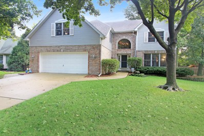 16545 Winding Creek Road, Plainfield, IL 60586 - MLS#: 10107589
