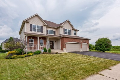 25139 Fieldbrook Drive, Plainfield, IL 60544 - #: 10107645