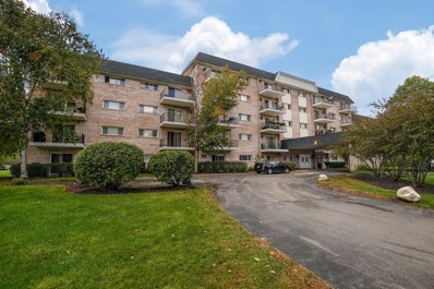 1000 S Lorraine Road UNIT 101, Wheaton, IL 60189 - MLS#: 10107696