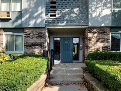904 E Old Willow Road UNIT 104, Prospect Heights, IL 60070 - #: 10108128