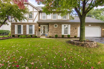 359 Knoch Knolls Road, Naperville, IL 60565 - MLS#: 10108292