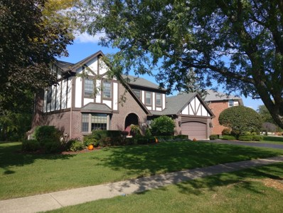 118 Grant Avenue, Frankfort, IL 60423 - MLS#: 10108300