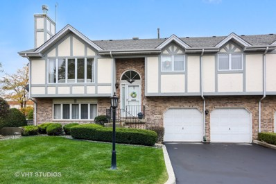 6742 Eagle Drive, Tinley Park, IL 60477 - MLS#: 10108333