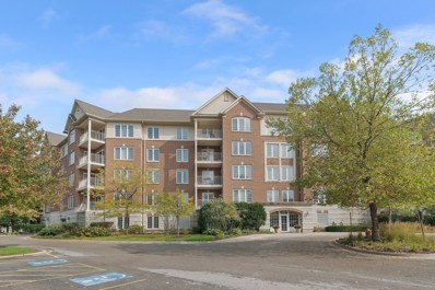 640 Robert York Avenue UNIT 203, Deerfield, IL 60015 - MLS#: 10108406