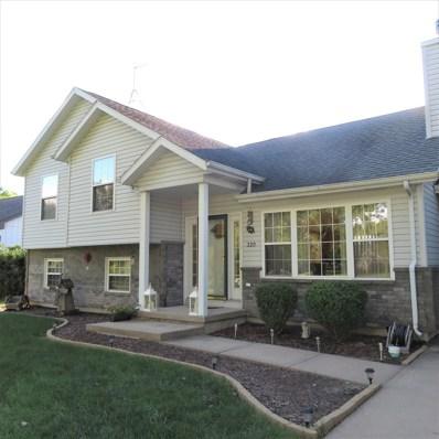 320 S Division Street, Braidwood, IL 60408 - #: 10108680