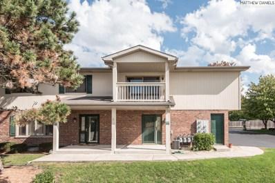 11040 Eagle Drive UNIT D, Palos Hills, IL 60465 - #: 10108895