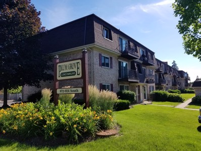 924 S Plum Grove Road UNIT 228, Palatine, IL 60067 - MLS#: 10109179