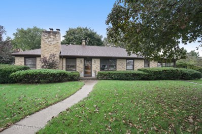100 S Alfred Avenue, Elgin, IL 60123 - MLS#: 10109292