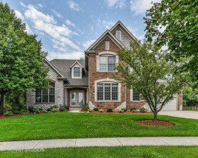 51 Mitchell Circle, Wheaton, IL 60189 - #: 10109607