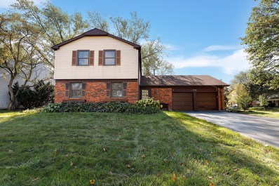 1 Amherst Court, Buffalo Grove, IL 60089 - MLS#: 10109831