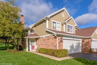 114 Whitman Drive, Schaumburg, IL 60173 - MLS#: 10110563