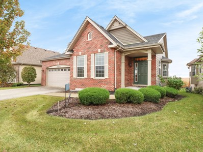 13621 Palmetto Drive, Plainfield, IL 60544 - MLS#: 10110783