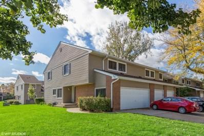 171 W Fabish Drive, Buffalo Grove, IL 60089 - #: 10111004